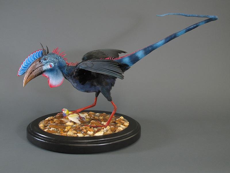 rare-birds-photo-11
